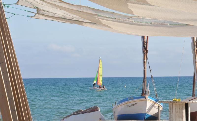 (c) Bonamedia la platja de Calafell