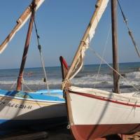 (c) Bonamedia vaixells